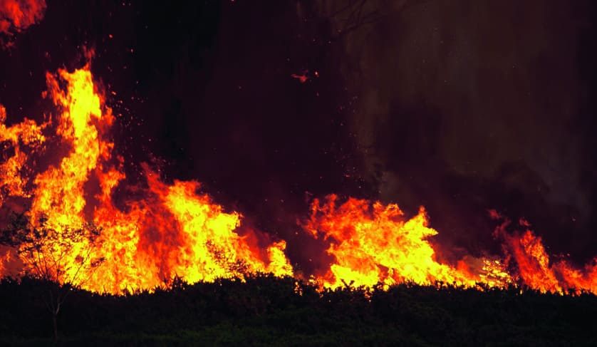 10 bushfire tips to help protect your property assets
