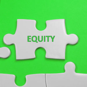 Equity in investment properties