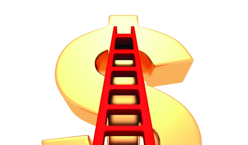 A ladder leaning against a dollar sign